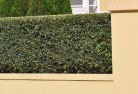 Balnarring Hard landscaping surfaces 8