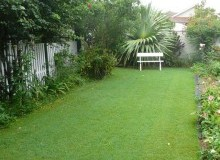 Kwikfynd Lawn and Turf balnarring
