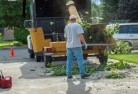 Balnarring Tree cutting services 13