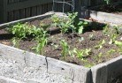 Balnarring Vegetable gardens 14